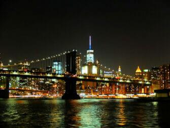 Middagscruise i New York - Skyline
