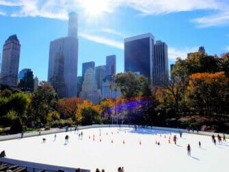 Løbe på skøjter i New York - Central Park