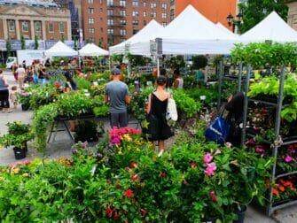 Markeder i New York - Planter på Union Square