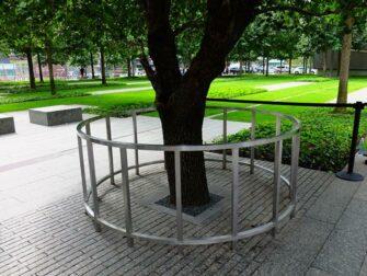 9/11 Memorial i New York - Survivor Tree