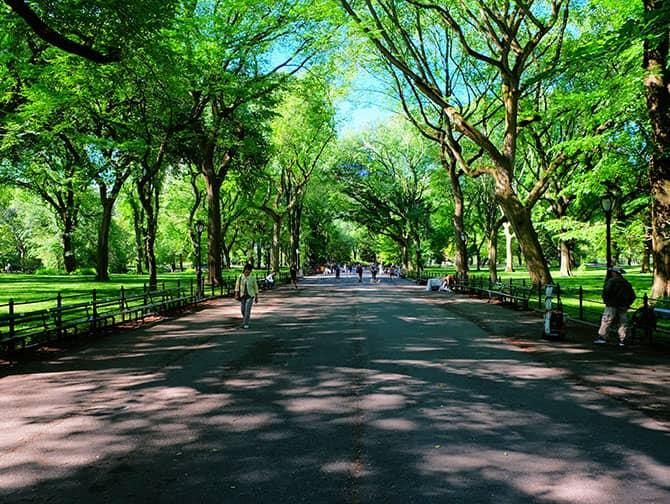 Labor Day i New York - Gåtur i Central Park