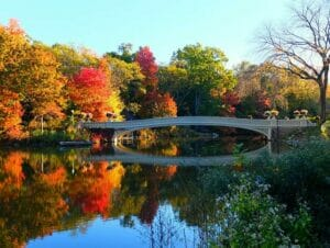 Guidet tur til filmlokationer i Central Park - Bow Bridge