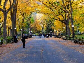 Guidet tur til filmlokationer i Central Park - The Mall