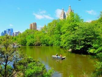 Leje robåd i Central Park - Par i robåd