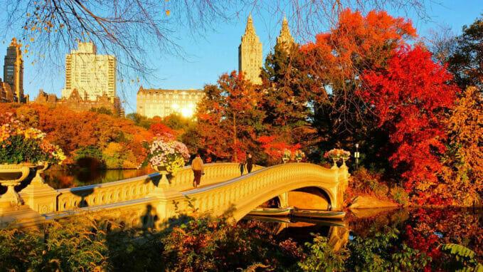 Efteraar i Central Park – Zoom