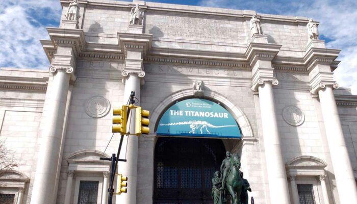 Top museer i New York - American Museum of Natural History