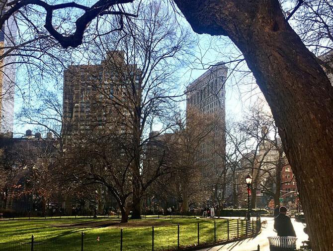 Flatiron Building i New York - Madison Square Park