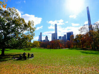 Parker i New York - Central Park
