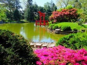 Botanical Gardens i New York