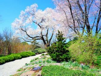 Botanical Gardens i New York - New York Botanical Garden i Bronx